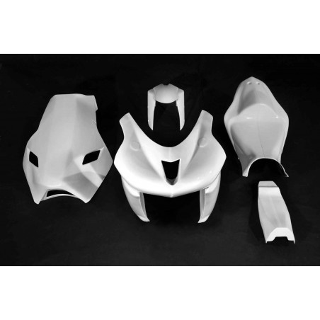 CARENAGE poly ZX6R 2006/2008